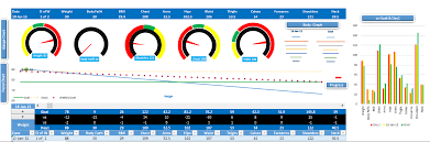 Work In Progress Excel Template Fitness Tracker Template Excel To Track Your Fitness Progress
