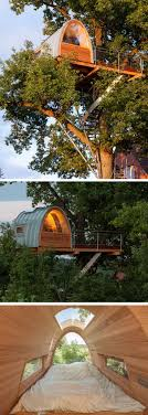 Exotic Tree Houses 120 Best Tree Houses Images On Pinterest Treehouses