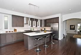 American Kitchen Picture Of Modern Open Plan American Kitchen With Island Bar With