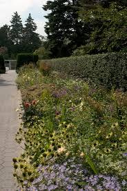 Small Picture Garden Design Archives Plant Talk