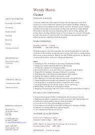 Cv Cleaner Essays On Competitive Strategy And Innovation Management Eng