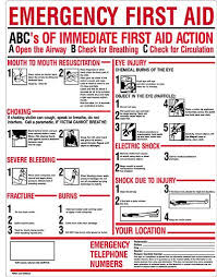 Free Printable First Aid Chart Free Printable First Aid Manual Healthy Hesongbai