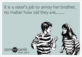 Funny Brother Quotes Mesmerizing It Is A Sisters Job To Annoy Her Brother No Matter How Old They Are