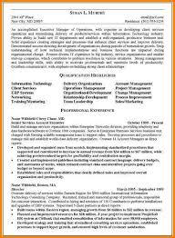 Executive Summary In Resume Mesmerizing 48 Resume Executive Summary Example Happytots