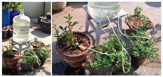 diy drip irrigation system for potted plants pvc trees