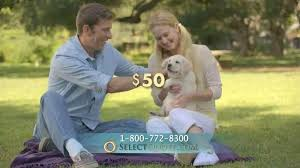 Select Quote Insurance Classy Select Quote Whole Life Insurance Breathtaking Select Quote