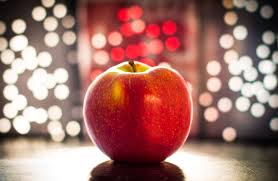 Image result for apple of knowledge