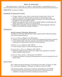 what should a good resume look like example of a good resume maths equinetherapies co