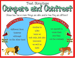 Venn Diagram Character Comparison Compare And Contrast Day 1 Mrs Petersens 5th Grade Class
