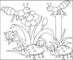 Spring Coloring Pages For Preschoolers At Getdrawingscom Free For