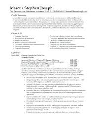 Samples Of Professional Summary For A Resume Professional Summary
