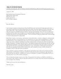 Professional Cover Lettersimple Cover Letter Application Letter