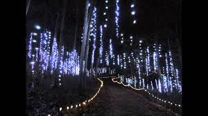 Wps Garden Of Lights Exciting Garden Of Lights Green Bay Amazing Design Wps All