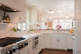 sharp micro drawer transitional kitchen and backsplash shelf dishwasher panel gas cooktop glass door fronts hardwood floor hood inset door mullion pendant
