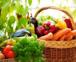 Image result for organic gardening