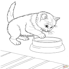 Collection of free kitty cat coloring pages (34) printable coloring pages cats kitty cat colouring pages Preschool Kitten Coloring Pages Coloring Home