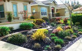 lovable no grass landscaping ideas