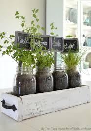 herbs in old drawer inside fruit jars