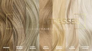 Lace Wig Hair Color Chart Wig Color Chart Wig Colors Heavenly Tresses