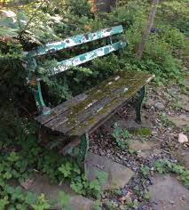 this bench is in a garden surrounded by a waterfall and ferns over the years