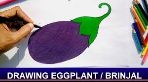 How To Draw Eggplant Brinjal With Easy Steps