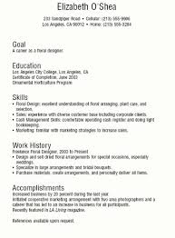 Teenage Resume Template. sample resumes for teens