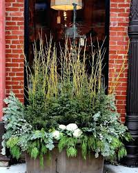 Christmas Window Box Decorations Window Box Decorated For Winter Christmas Tree Shop Planter Boxes 68