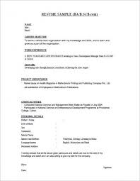 Resume Samples For Freshers Bsc Resume Templates