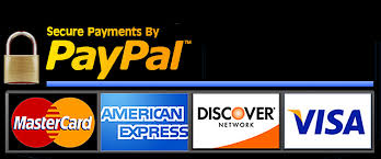 Image result for paypal logo art