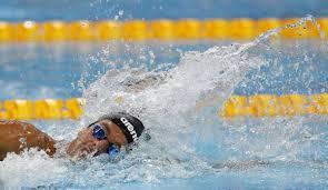 Jun 23, 2021 · gregorio paltrinieri, squalo del fondo: Olympic Swimming Champion Paltrinieri Has Mononucleosis