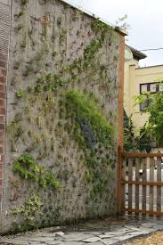 Small Picture The Worlds Most Magnificent Vertical Gardens Concrete