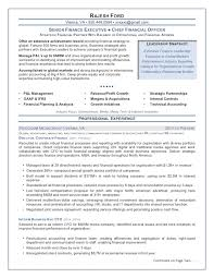 Chief Financial Officer Senior Finance Executive Resume Sample