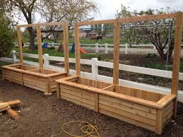 Planter box with built in trellis