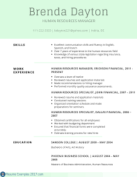 Skills Examples For Resume Remarkable Resume Examples Skills Resume Examples 100 18