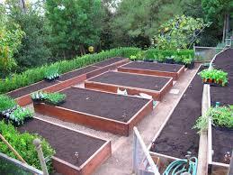 drip irrigation pam rownak gardenista