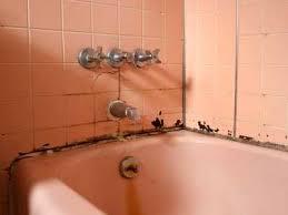 bathroom shower tile repair mold