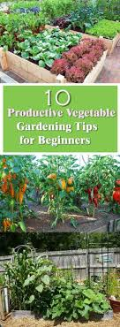 Small Picture Best 25 Garden guide ideas on Pinterest Vegetable gardening