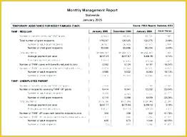 Sample Financial Analysis Report Template Statement Review Lccorp Co