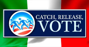 Image result for illegal voting in California