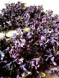 deep purple freeze dried natural lilac blossoms flowers 5 cups pkg 11