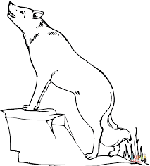 Small Picture Coyote 17 coloring page Free Printable Coloring Pages