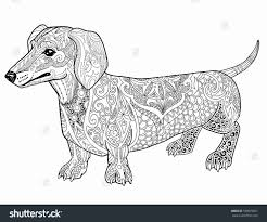 At Dachshund Coloring Pages Coloring Pages For Children