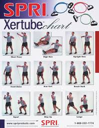 Bodybuilding Workout Chart For Men Pdf 8 Bodybuilding Exercises Chart With Pictures Pdf Pictures