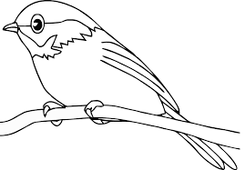 Small Picture Great Bird Coloring Pages 64 About Remodel Line Drawings with Bird