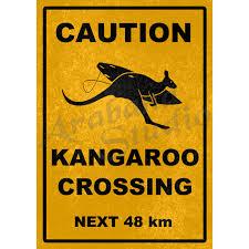 caution kangaroo crossing road sign poster