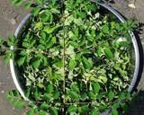 Cara membudidayakan daun kelor pun cukup mudah, siapa pun bisa menanam di halaman sekitar rumah. Resep Teh Daun Kelor Lunturkan Kolesterol Dan Anti Kanker Oleh Kiki Rizky Komariah Cookpad