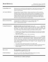 Actuary Resume Delectable Resume Actuary Resume Template Actuary Resume Template' Actuary Cv