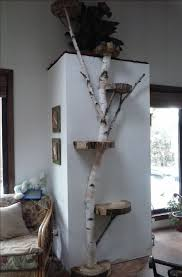 White Birch wall cat tree. Could put photos on the stumps and make it a