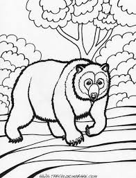 Small Picture adult free printable bear coloring pages free printable pooh bear