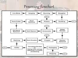 Meat Processing Flow Chart Carolina Butcher Shop Fresh Butcher Meats And Deer